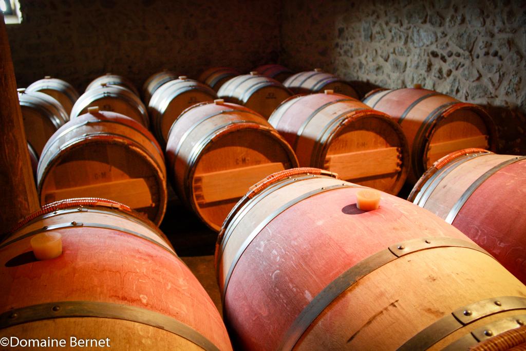 Le chai à barriques Domaine Bernet